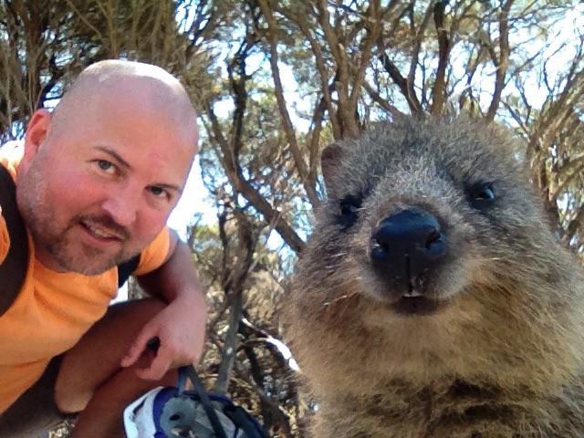 Quokkas give good selfies. Rottnest Island, Australia. Photo: Gareth Johnson