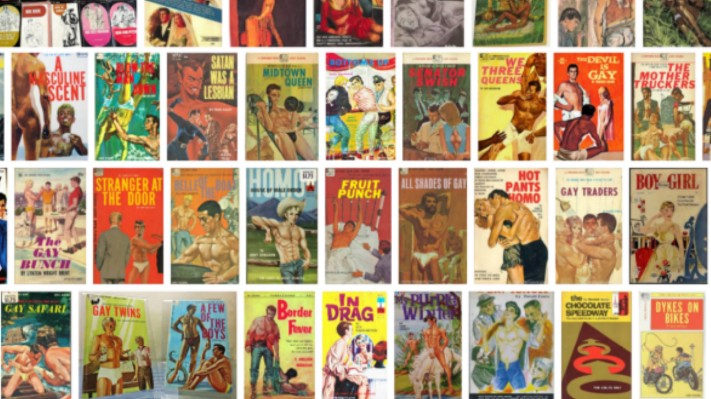 The history of queer pulp fiction (image generated by Google image search)