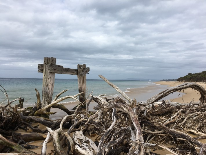 The remains of a jetty used to unload incoming cattle at the quarantine station at Point Nepean. Photo: Gareth Johnson
